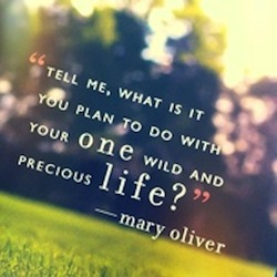 Mary-Oliver-quote1